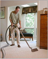Potomac,  MD Carpet Cleaning